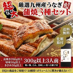 超特大 蒲焼3種セット
