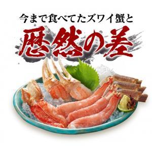 特大 生 ずわい ズワイ ずわいがに お歳暮 むき身 セット 1kg かに 蟹 カニ 刺身 かに刺し カニ鍋 かに鍋|kobecrab|03