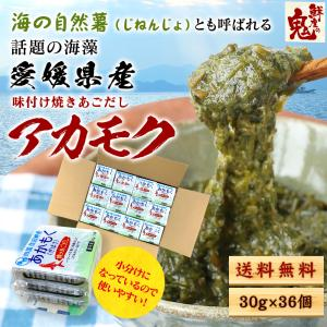 あかもく アカモク ぎばさ ギバサ 12 パック 36食分 愛媛県産 天然 海藻 通販 とろろ 食べ...