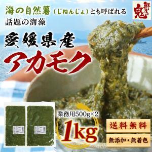 あかもく アカモク ぎばさ ギバサ 愛媛県産 1kg (500g×2P)  海藻 健康食品 スーパーフード 冷凍 魚 海産物|kobecrab