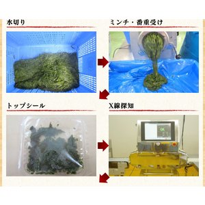 あかもく アカモク ぎばさ ギバサ 愛媛県産 1kg (500g×2P)  海藻 健康食品 スーパーフード 冷凍 魚 海産物|kobecrab|11