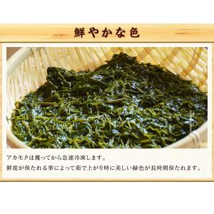 あかもく アカモク ぎばさ ギバサ 愛媛県産 1kg (500g×2P)  海藻 健康食品 スーパーフード 冷凍 魚 海産物|kobecrab|06