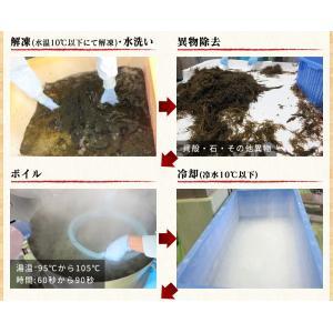 あかもく アカモク ぎばさ ギバサ 愛媛県産 1kg (500g×2P)  海藻 健康食品 スーパーフード 冷凍 魚 海産物|kobecrab|10