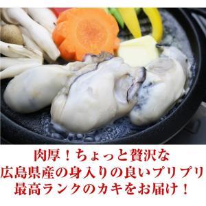 広島産 かき カキ 牡蠣 貝類 むき身 1kg 広島県産 カキフライ 鍋|kobecrab|02