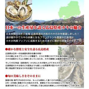 広島産 かき カキ 牡蠣 貝類 むき身 1kg 広島県産 カキフライ 鍋|kobecrab|05