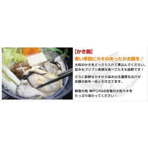 広島産 かき カキ 牡蠣 貝類 むき身 1kg 広島県産 カキフライ 鍋|kobecrab|07