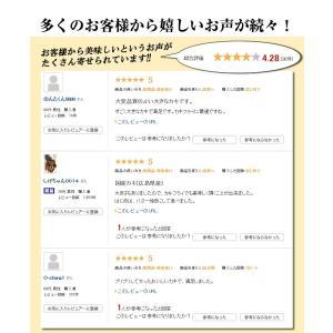広島産 かき カキ 牡蠣 貝類 むき身 1kg 広島県産 カキフライ 鍋|kobecrab|09