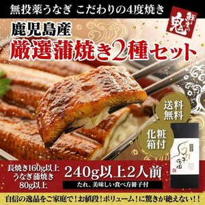 うなぎ お中元 ギフト ランキング 鰻 蒲焼き 国産 2種 化粧箱 セット プレゼント 土用 丑