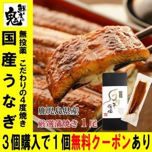 お中元 ギフト 国産 うなぎ 蒲焼き 1尾 ウナギ 鰻 お祝い プレゼント ギフト アマビエ付き