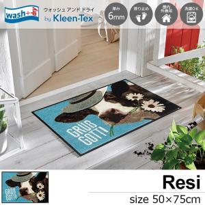 玄関マット 屋外 室内 洗える 滑り止め wash+dry Resi 50×75cm|kobelongtail
