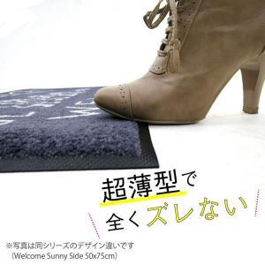 玄関マット 屋外 室内 洗える 滑り止め wash+dry katzenbande beige 50×75cm|kobelongtail|06
