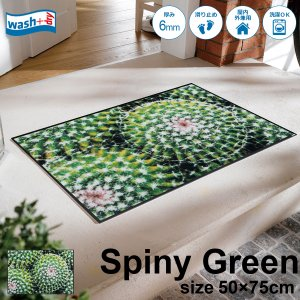 玄関マット 屋外 室内 洗える 滑り止め wash+dry Spiny Green 50x75cm|kobelongtail