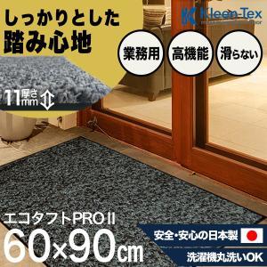 玄関マット 屋外 室内 おしゃれ 洗える 室内 屋外 エコタフトPRO II シルハ゛ー/フ゛ラック  60  x  90  cmの写真