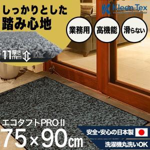 玄関マット 屋外 室内 おしゃれ 洗える 室内 屋外 エコタフトPRO II シルバー/ブラック  75  x  90  cm|kobelongtail