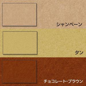 玄関マット 業務用 屋外 屋内 室内 無地 滑り止め スタンダードマットS 選べる22色 30サイズ 60×90cm|kobelongtail|13