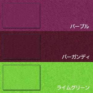 玄関マット 業務用 屋外 屋内 室内 無地 滑り止め スタンダードマットS 選べる22色 30サイズ 60×90cm|kobelongtail|10