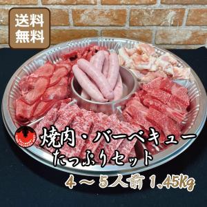 肉 焼肉 BBQ 国産焼肉 黒毛和牛 牛肉 牛肉たっぷりセット 4〜5人前 kobeusunaga