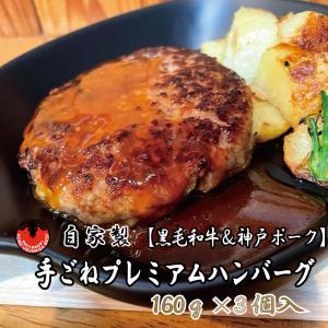 ハンバーグ グルメ 黒毛和牛 神戸ポーク 自家製 手ごね プレミアム 冷凍 お土産 おすすめ kobeusunaga
