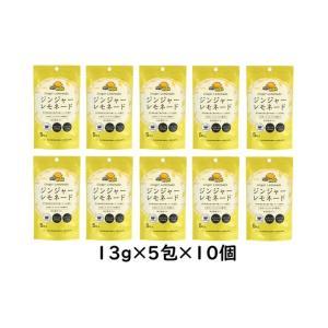 ジンジャーレモネードSP×10個|kobucha-fuji