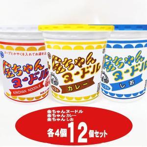 金ちゃんヌードル3種で1箱セット(ヌードル・しお・カレー)