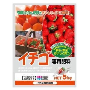 有機100% イチゴ専用肥料 5kg 2袋セット 送料無料 同梱不可|kochaya