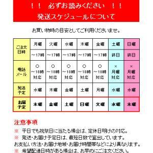 福本さんの長太郎貝2kg|kochi-bussan|02