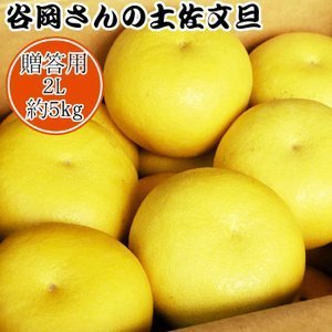 【贈答用】谷岡さんの土佐文旦 2L/5kg|kochi-bussan