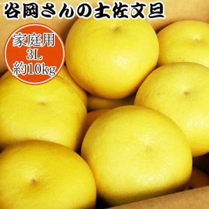 【家庭用】谷岡さんの土佐文旦 3L〜4L/10kg|kochi-bussan