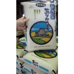 【令和2年産新米】真空パックあきたこまち 無洗米 1kg  放射能・残留農薬不検出 農家産直の美味しい無洗米 の商品画像|ナビ