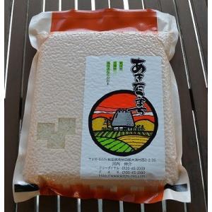 【29年産新米】真空パック あきたこまち白米 1kg  放射...