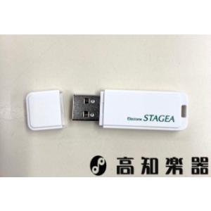 ヤマハエレクトーン専用USB 【対応機種】 ・ELS-02シリーズ(含むバイタライズ02) ・ELS...
