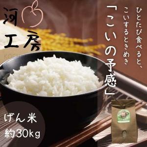 米 恋の予感 玄米 約30kg 晴れの国岡山 岡山の米 農家直送 ひとたび食べると恋するときめき