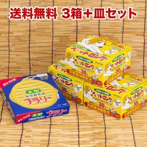 送料無料 ペット用蚊取り線香3箱+線香皿セット 天然除虫菊ペットロング|kodama-shop