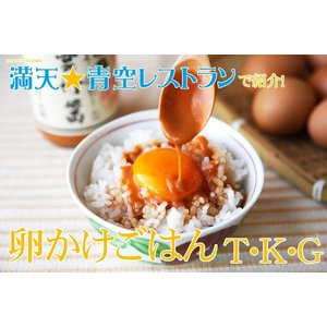 雲丹醤 うにひしお 雲丹醤油 |kodawariichibaya|03