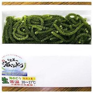 代引不可 沖縄 久米島産 球美の海ぶどう(海ブドウ) 200g|kodawariokinawa