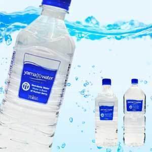 送料無料 Pi‐Water エイシーエムパイウォーター 500ml×24本(1ケース) 1本あたり118円(税抜)|kodawariokinawa