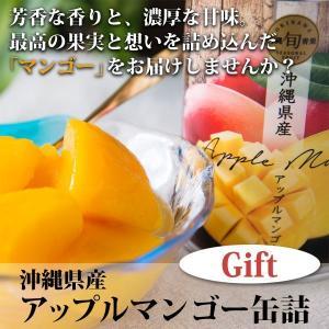 沖縄県産アップルマンゴー缶詰 (2缶入)化粧箱 kodawariokinawa