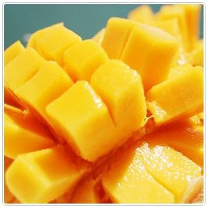 送料無料 ぐしけんマンゴー 1kg箱2個〜3個 ギフト用秀品 kodawariokinawa