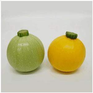 丸ズーキーニ(5個)黄・緑混合【送料無料】|kodawariokinawa