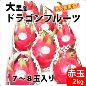 送料無料 大里産ドラゴンフルーツ 赤玉2kg7玉〜8玉