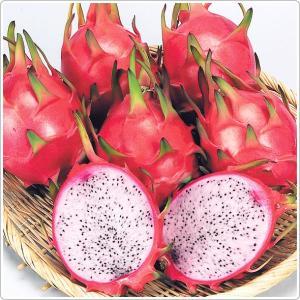 大里産 ちゅらみやらび 1kg2〜3玉 高級ピンクドラゴンフルーツ