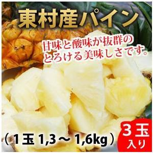 送料無料 東村産ハワイ種パイン 3玉入 1玉1、3kg〜1.6kg以下 ふくしま農園