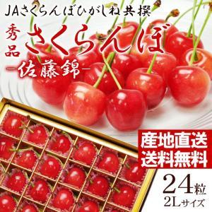 (露地栽培)山形県東根産さくらんぼ 佐藤錦 2Lサイズ 24...