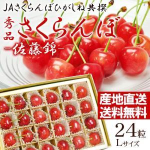 (露地栽培)山形県東根産さくらんぼ 佐藤錦 Lサイズ 24粒...