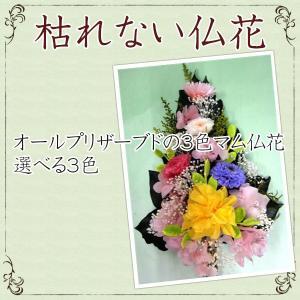 仏花 オールプリザーブドの3色マム仏花 選べる3...の商品画像