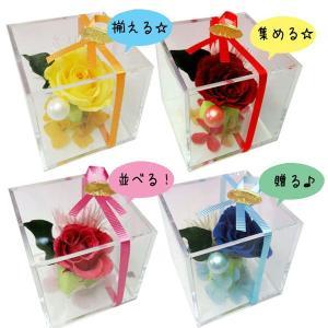 キューブミニアレンジ|kodemari-jp