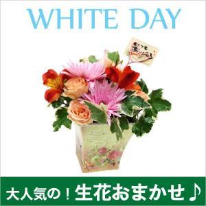 【生花】おまかせ アイビーのフレンチポットアレンジ|kodemari-jp