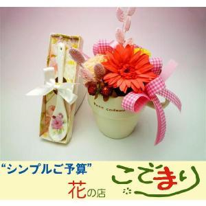 プリザーブドフラワー/ガーベラとカーネーションのマグカップアレンジとバラのティースプーンのセット|kodemari-jp