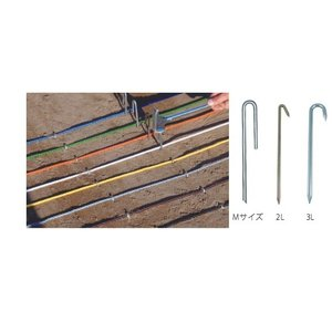ラインロープ釘 クギ 2Lサイズ  強力タイプ  50本入り  負荷の大きいコーナーや柔らかめの砂地におすすめ|kodomor