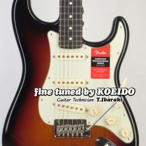 Fender USA American Professional  Stratocaster RW ...